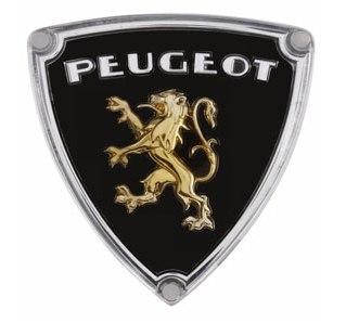 Peugeot Fuel Injection Conversion